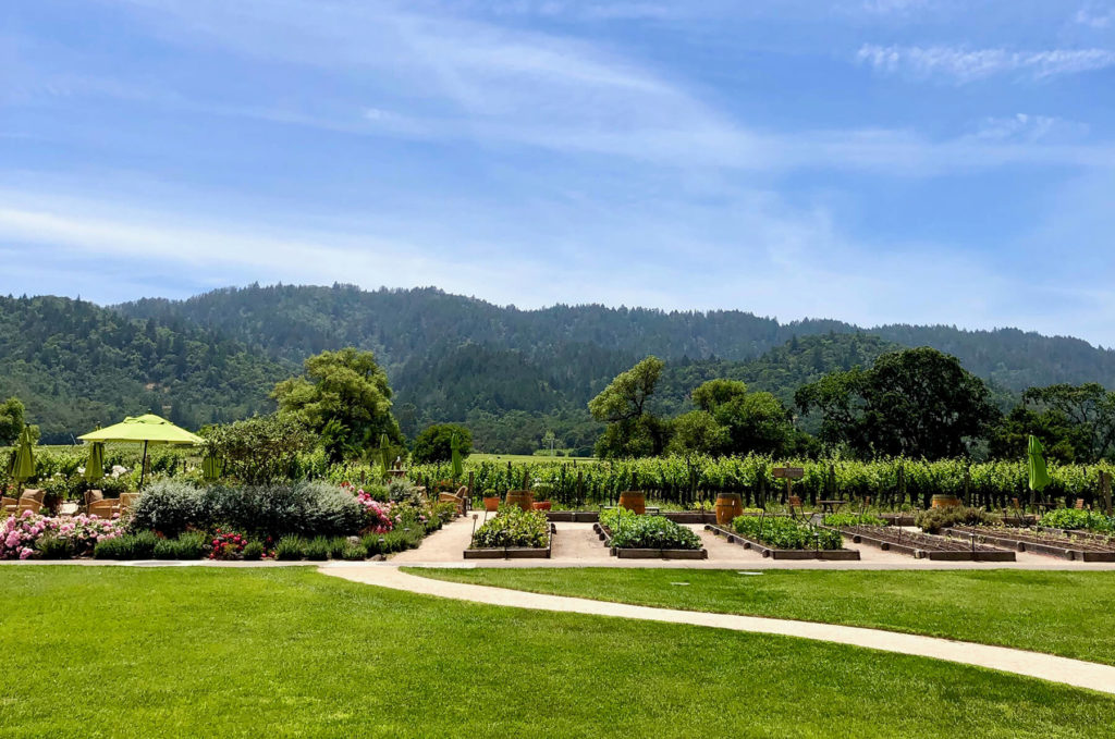 View of Brix Napa Valley garden and Kelleher Family Vineyards Cabernet.