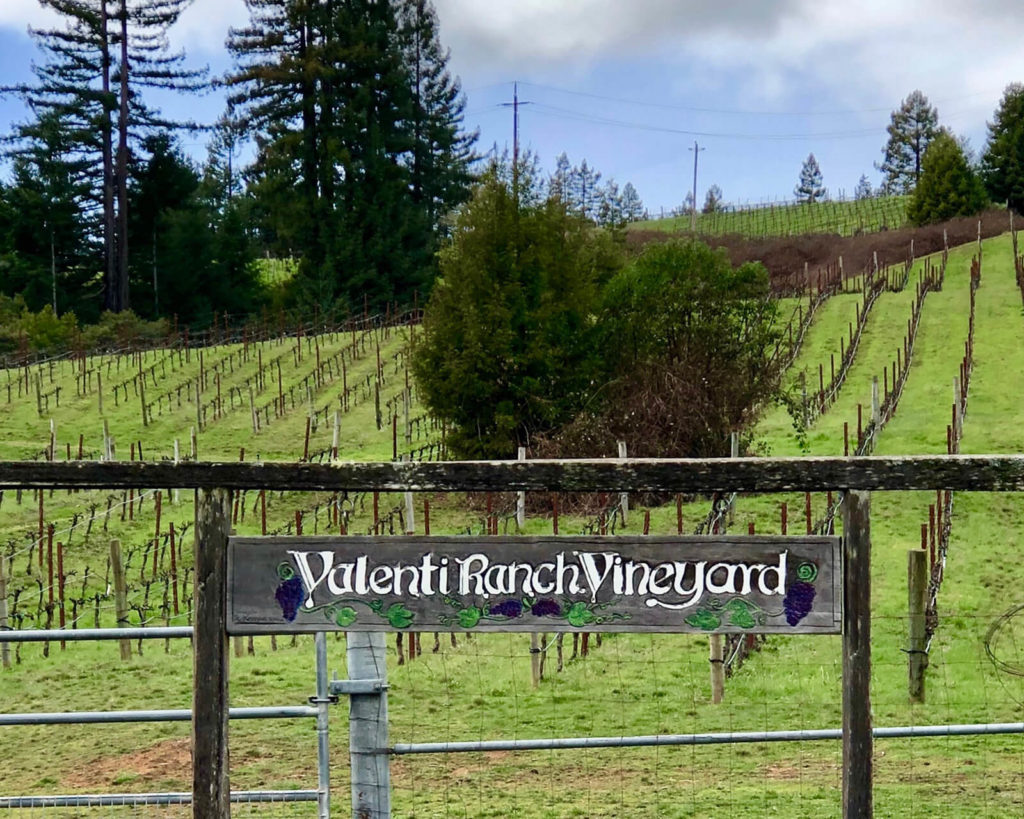 "Valenti Ranch Vineyard, Philo, ""2 Fun Days Tasting Anderson Valley Pinot Noir."""