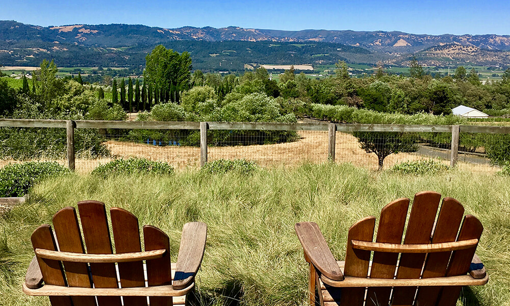 Chairs and Napa Valley view, Mayacamas Estate.